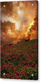 Acrylic Print featuring the photograph 4370 by Peter Holme III