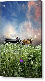 Acrylic Print featuring the photograph 4376 by Peter Holme III