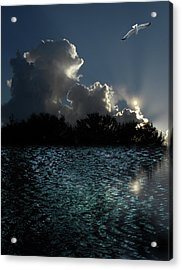 Acrylic Print featuring the photograph 4377 by Peter Holme III