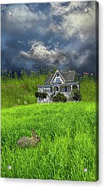 Acrylic Print featuring the photograph 4379 by Peter Holme III