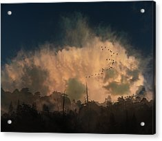 Acrylic Print featuring the photograph 4382 by Peter Holme III