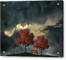 Acrylic Print featuring the photograph 4384 by Peter Holme III