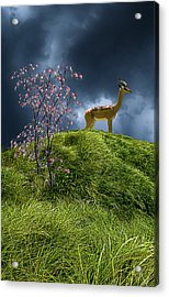 Acrylic Print featuring the photograph 4388 by Peter Holme III