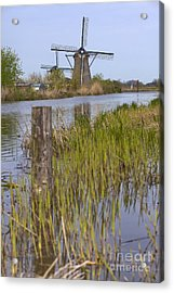 Mills In Netherlands Acrylic Print by Andre Goncalves