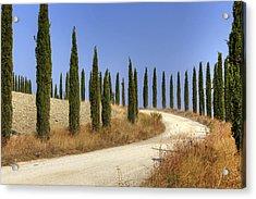 Tuscany Acrylic Print by Joana Kruse