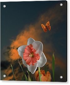 Acrylic Print featuring the photograph 4413 by Peter Holme III