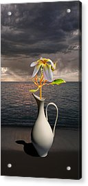Acrylic Print featuring the photograph 4416 by Peter Holme III