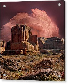 Acrylic Print featuring the photograph 4417 by Peter Holme III