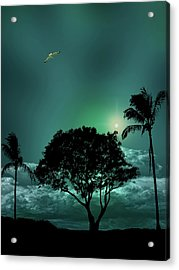 Acrylic Print featuring the photograph 4420 by Peter Holme III