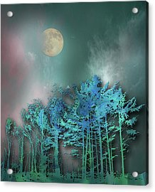 Acrylic Print featuring the photograph 4480 by Peter Holme III