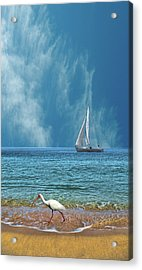 Acrylic Print featuring the photograph 4485 by Peter Holme III
