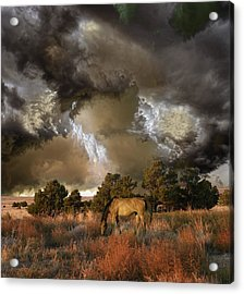 Acrylic Print featuring the photograph 4486 by Peter Holme III