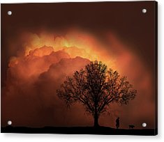 Acrylic Print featuring the photograph 4491 by Peter Holme III