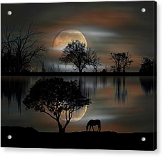 Acrylic Print featuring the photograph 4493 by Peter Holme III