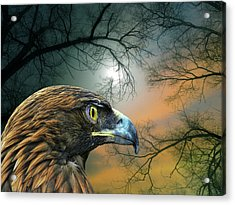 Acrylic Print featuring the photograph 4506 by Peter Holme III