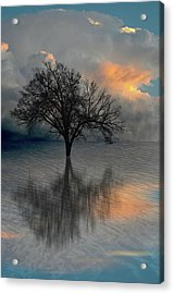 Acrylic Print featuring the photograph 4507 by Peter Holme III