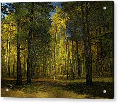 Acrylic Print featuring the photograph 4508 by Peter Holme III
