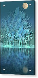 Acrylic Print featuring the photograph 4510 by Peter Holme III