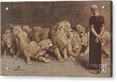 Daniel In The Lions Den Acrylic Print