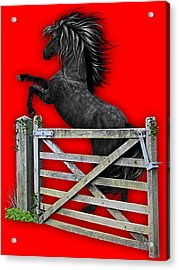 Horse Dreams Collection Acrylic Print by Marvin Blaine