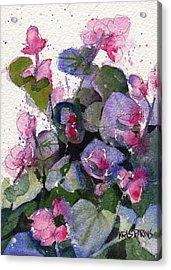 Acrylic Print featuring the painting My Annual Begonias by Kris Parins