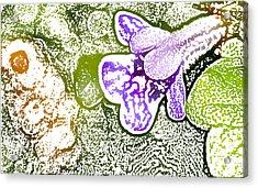 Purple Flower Acrylic Print by Jouko Mikkola