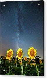 Sunflower Galaxy IIi Acrylic Print