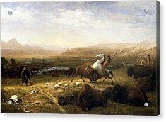 The Last Of The Buffalo  Acrylic Print