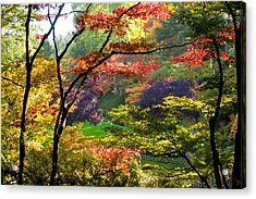 Trees In A Garden, Butchart Gardens Acrylic Print by Panoramic Images