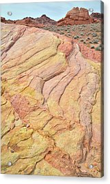Acrylic Print featuring the photograph Waves Of Color In Valley Of Fire by Ray Mathis