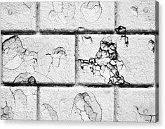 White Brick Wall Acrylic Print by Tom Gowanlock