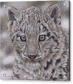 50 Shades Of Grey Acrylic Print