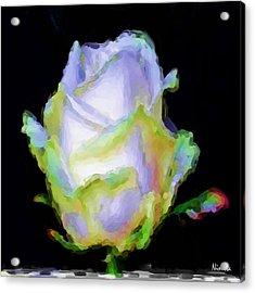 5.5 Innocence  Artwork In Poster Acrylic Print by Andrea N Hernandez