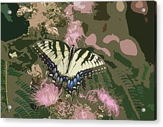5807 3 Acrylic Print by Jim Simms