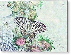 5807 5 Acrylic Print by Jim Simms