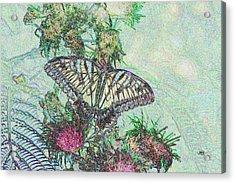 5807 6 Acrylic Print by Jim Simms