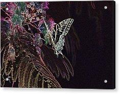 5815 2 Acrylic Print by Jim Simms