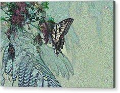 5815 5  Acrylic Print by Jim Simms