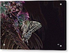5818 3 Acrylic Print by Jim Simms