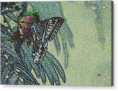 5819 4 Acrylic Print by Jim Simms