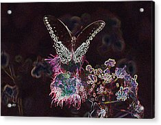 5844 3 Acrylic Print by Jim Simms