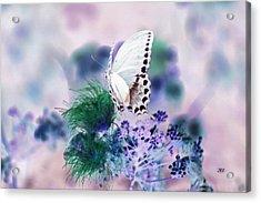5846 2 Acrylic Print by Jim Simms