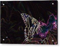 5859 3 Acrylic Print by Jim Simms