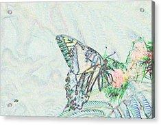 5859 4 Acrylic Print by Jim Simms