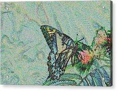 5859 5 Acrylic Print by Jim Simms