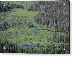 Scenery Rocky Mountain Np Co Acrylic Print