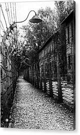 Auschwitz Acrylic Print
