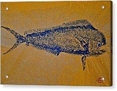 Gyotaku - Mahi Mahi - Dorado - Dolphinfish Acrylic Print