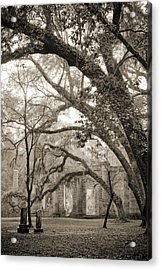 Old Sheldon Church Ruins Acrylic Print by Dustin K Ryan