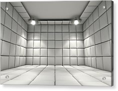Padded Cell Acrylic Print by Allan Swart